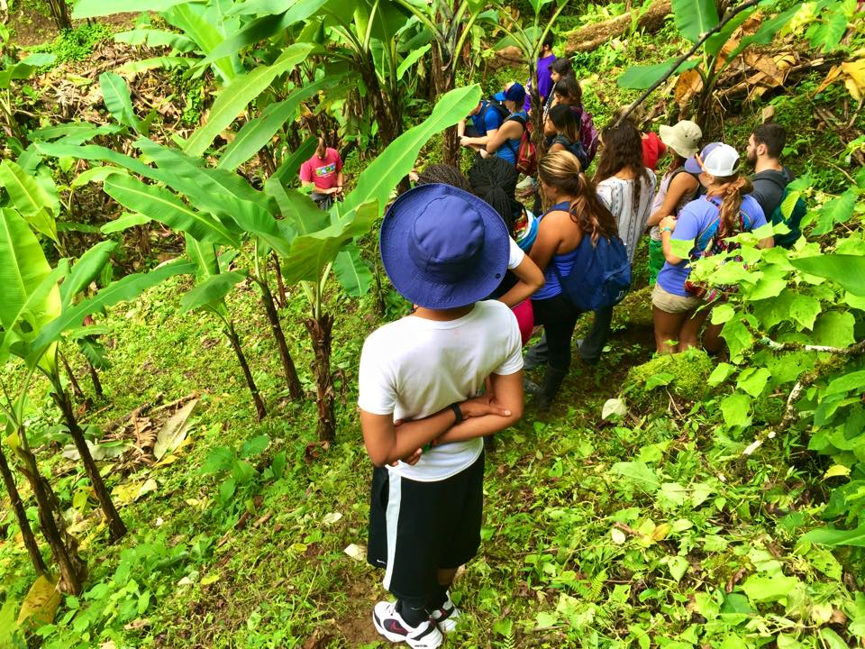 Excursions - Study in Costa Rica | Adelante Abroad